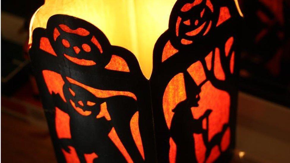 Полезные свойства розы и сферы её применения